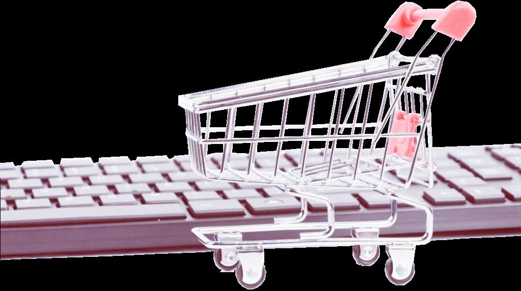elife2go.com cart 1